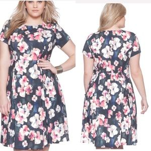 Eloquii Floral Fit and Flare Dress Sz 22